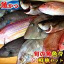 ウハウハ 鮮魚セット鮮魚セット 送料無料旬の 鮮魚 詰め合わせ焼き魚煮つけ刺身鮮魚 一匹
