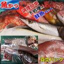 下処理鮮魚セット魚 詰め合わせ 送料無料刺身 鮮魚 詰め合わ