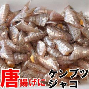 冷凍けんぶつじゃこ(ねぶと)唐揚げが旨い貴重な小魚瀬戸内海の珍味約250g(唐揚げ3人前)