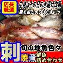【送料無料】魚かつのウハウハ鮮魚セット - 山口県産海鮮広場 魚かつ