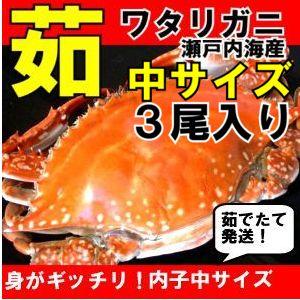 茹で(ゆで)ワタリガニ メス中(標準)サイズ3尾【送料無料】わたりがに、渡り蟹、ガザミ