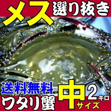 ワタリガニ メス選り抜き中(標準)サイズ生約2kg(5−7尾)送料無料わたりがに、渡り蟹、ガザミ