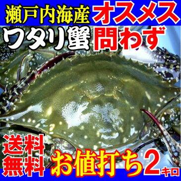 ワタリガニオスメス問わず生小ー中サイズ約2kg(6-8尾)活き〆<生>発送送料無料渡り蟹、わたりがに