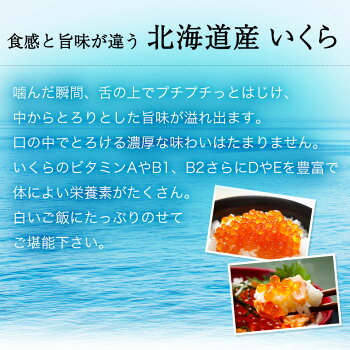 いくら北海道産いくら醤油漬け1kg(500g×2)最高級3特グレード北海道産の新鮮な鮭の卵から作ったいくらはまさにトロけるような味わい【イクラ醤油漬け】【ギフト/お歳暮/御歳暮/贈答用】