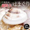 【超特大】 活き 天然地 はまぐり 合計約 1kg(1個約 170g-200g)5-6個 千葉県産 ハマグリ 地蛤 バーベキュー BBQ 豊洲直送 チルド