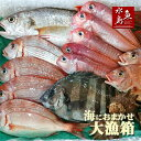 厳選 日本海の鮮魚セット「海におまかせ・大漁箱」 大満足詰め