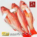 【送料無料】のどぐろ 新潟・日本海産 ノドグロ 400g以上...