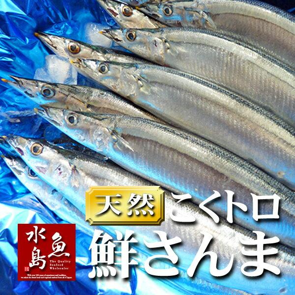 秋刀魚 こくトロ生サンマ 刺身用 特大2kg 12~14尾
