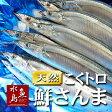 秋刀魚 こくトロ生サンマ 刺身用 特大2kg 12〜16尾