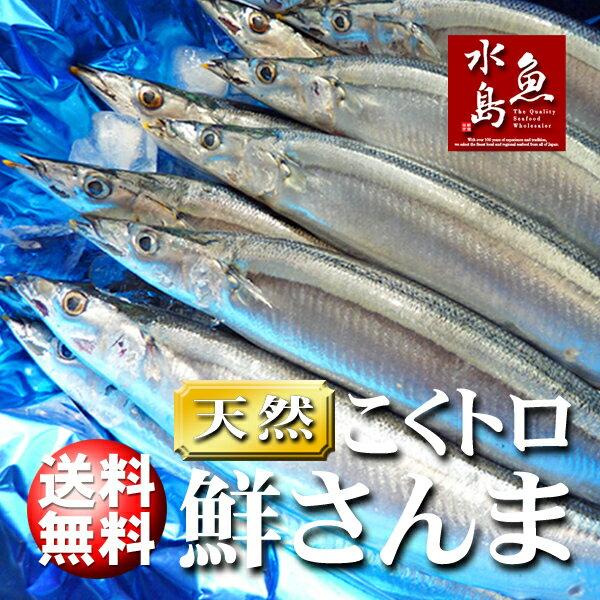 【送料無料】秋刀魚 こくトロ生サンマ 刺身用 特大4kg 25~30尾
