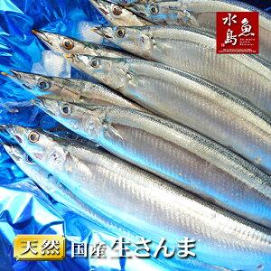 秋刀魚 こくトロ生サンマ 刺身用 特大4kg 30〜34尾