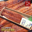 国産 鰻うなぎ蒲焼き ふっくら厳選素材 約30cm 特々大 約200g×1尾 父の日ギフト/土用丑の日/お中元