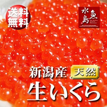 【送料無料】新潟産 生いくら 季節限定「とろりやわらか 生イクラ」 2kg