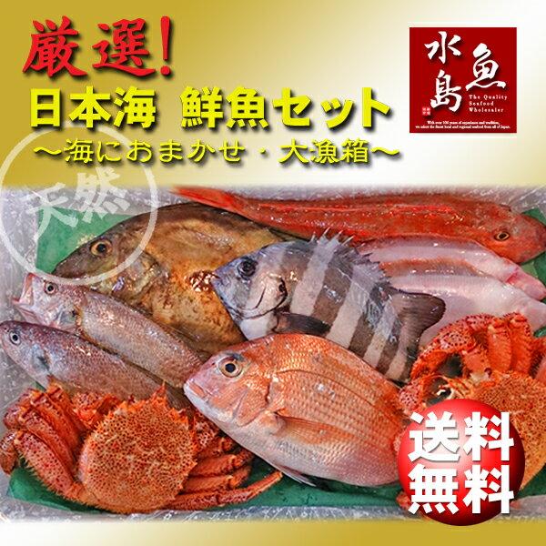 【送料無料】厳選 日本海の鮮魚セット「海におまかせ・大漁箱 ちょっと贅沢編」大満足詰め合わせ