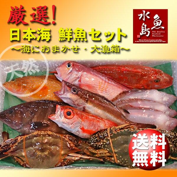 【送料無料】厳選 日本海の鮮魚セット「海におまかせ・大漁箱 たっぷり贅沢編」大満足詰め合わせ