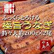 【送料無料】炭火焼 鰻うなぎ蒲焼き ふっくらとろける極旨ウナギ 約30cm特々大 約200g×2尾 土用丑の日/お中元ギフト