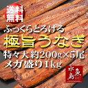 【送料無料】炭火焼 鰻うなぎ蒲焼き ふっくらとろける極旨ウナギ 約30...