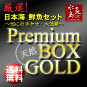 【送料無料】厳選日本海の鮮魚セット「海におまかせ・大漁箱プレミアムBOXゴールド」大満足詰め合わせ
