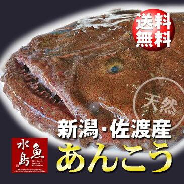 【送料無料】新潟・佐渡産 天然 あんこう アンコウ 一匹丸もの 5kg以上