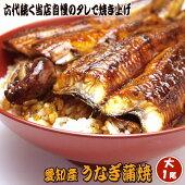 鰻蒲焼大1尾冷蔵発送