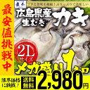 【2個買いで500円OFFクーポン!】【 年始発送!限界価格...