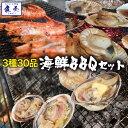 【期間限定4980円】バーベキューセット 海鮮 ゴールデンウ