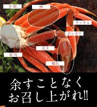 ボイルずわいがに5kg訳ありかにカニ蟹脚ずわいがにずわいかにしゃぶしゃぶ用かにボイル[送料無料]激安かにしゃぶかに鍋お取り寄せお試し