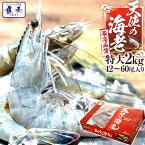 最安値挑戦中 海鮮 天使の海老 有頭 特大サイズ 1kg×2 お取り寄せ お試し世界最高品質 刺身 生食 冷凍 高級 てんしのえび 送料無料