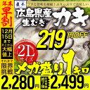 【2個買いで500円OFFクーポン!】【年末早割219円OF...