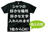 オーダーメイド ドライTシャツ 300-ACTオリジナル 名入れ Tシャツ チームシャツ 【名入れ可能】