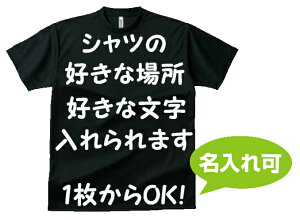 オーダーメイド ドライTシャツ 300-ACT/5900オリジナル 名入れ Tシャツ チームシャツ 【名入れ可能】