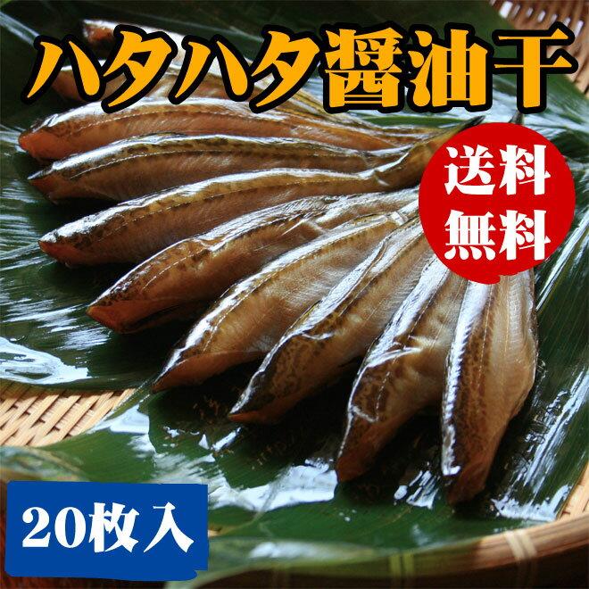 【送料無料】日本海産ハタハタ(はたはた)醤油干し(20-32尾)