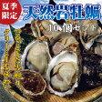 【送料無料】天然岩牡蠣10個セット(割ってお届け)
