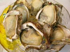 笹川流れの天然岩牡蠣(殻を割って) 【送料無料】天然岩牡蠣(割ってお届け)8個セット【smtb...