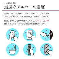 高濃度携帯用除菌ウェットティッシュ即納100枚(10枚入り×10袋)保湿洗浄99.9%除菌アルコールエタノール除菌シートプロテックPROTEK