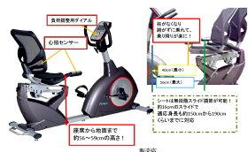 エアロバイクリカンベントバイクDK-8718RP【大広】【送料無料】【リカンベントバイク】【エアロバイク】【健康器具】【ダイエット器具】【sp_1122】【SS02P02dec12】