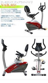 リカンベント/エアロバイク/リカンベントバイク