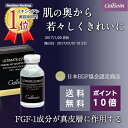 グロースファクター美容液 FGF-1 成長因子配合 肌の奥へ作用する美...