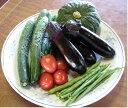 最低限の農薬のみを利用した新鮮野菜の詰合野菜ソムリエの新鮮野菜セット