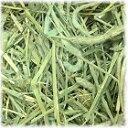 アメリカンチモシー1番刈り500g×2個 ダブルプレス牧草