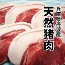 【冬季限定】天然猪肉(兵庫県丹波産)バラ肉 300g 特製スープサービス!!【ぼたん鍋】【牡丹鍋】【猪鍋】【冷凍便】
