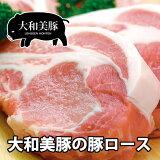 大和美豚 豚ロース肉 500g 豚肉 焼肉 焼き肉 ヤキニク やきにく しゃぶしゃぶ あす楽対応 RCP