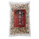 美味しいご飯でほっこり 奥八女の棚田からとれた無農薬栽培の自然米 五穀玄米
