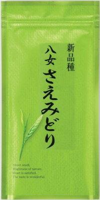 【2013年度産新茶販売開始】【品種茶】お茶の旨味が多くお茶の色がきれいな八女で人気の早生品種「八女さえみどり」