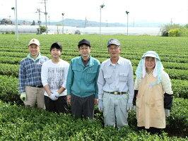 2019年新茶予約日本茶緑茶八女茶八女さえみどり80g煎茶茶葉緑茶お茶深蒸し茶日本茶茶贈答内祝ギフトポイント消化