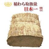 わら 稲わら ハーフカット 約50cm 約12kg【わら焼き】【農業・園芸用 敷きわら】等に