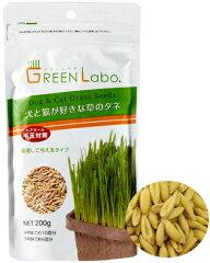 GREEN Labo【犬と猫が好きな草のタネ】200g