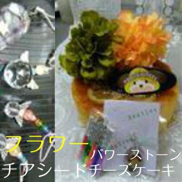 <お祝い用/幸せのパワーストーンつき>フラワーハチミツ塩レモン[チアーシードチーズケーキ]お子様のお誕生日に,お友達のお祝いに最適です。幸せを願ってパワーストーンを財布等にお守りとして/お正月手土産/クリスマスプレゼント/10P03Dec16/