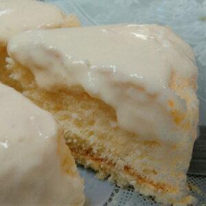 半生クリームチーズケーキ
