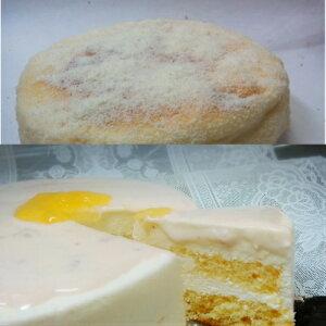 半生レアーチーズケーキとココナッツチーズケーキのセット